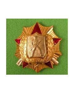 Order Of Soldier Honor 1St Class